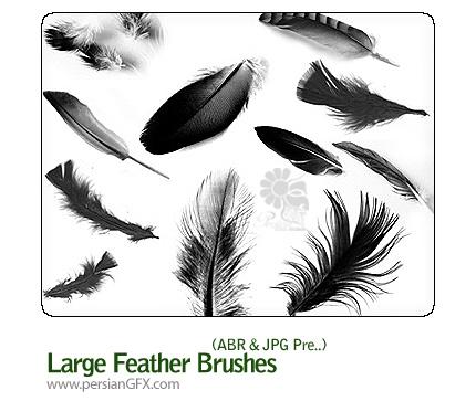 براش زیبای بال پرندگان - Large Feather Brushes
