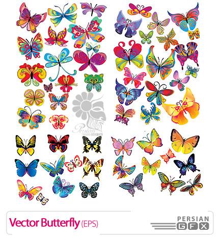 تصاویر وکتور زیبای پروانه ها - Vector Butterfly