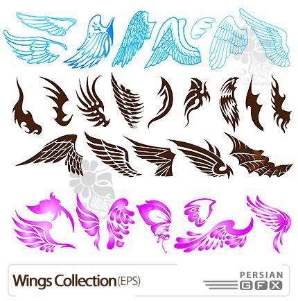مجموعه ی وکتورهای بال - Wings Collection