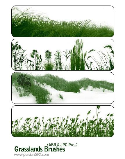 براش چمنزار در فتوشاپ - Grasslands Brushes