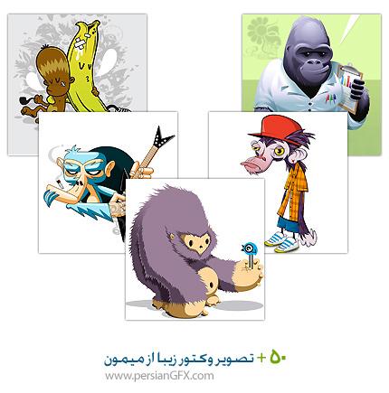 بیش از 40 تصویر وکتور از میمون