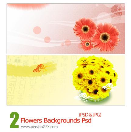 دانلود تصویر لایه باز بک گراند گل دار - Flowers Backgrounds Psd
