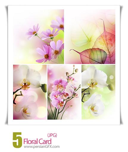 دانلود تصاویر کارت گل دار - Floral Card
