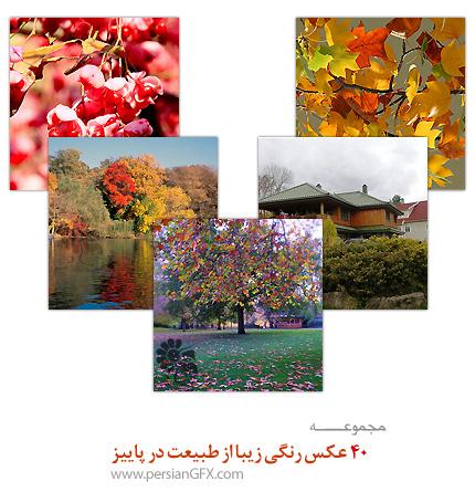 40 عکس رنگی زیبا از طبیعت در پاییز