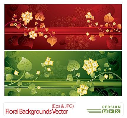 دانلود وکتور پس زمینه - Floral Backgrounds Vector