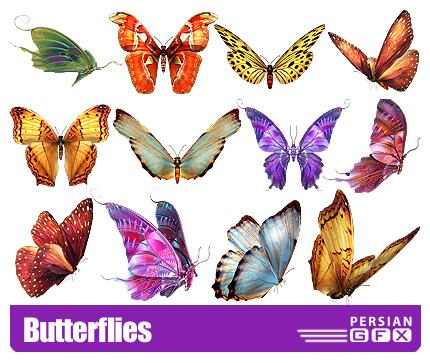 دانلود کلیپ آرت پروانه های رنگی - Butterflies