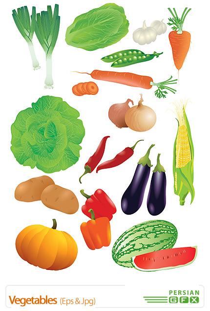 دانلود تصاویر وکتور سبزیجات - Vegetables