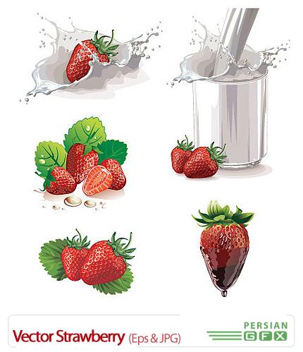 دانلود تصاویر وکتور توت فرنگی - Vector Strawberry
