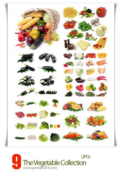 دانلود تصاویر با کیفیت کلکسیون سبزیجات - Stock Photo The Vegetable Collection