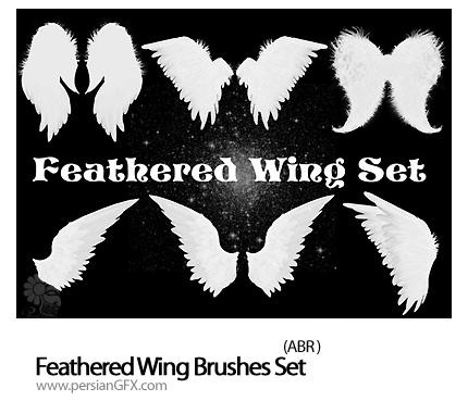 مجموعه براش بال فرشته - Feathered Wing Brushes Set
