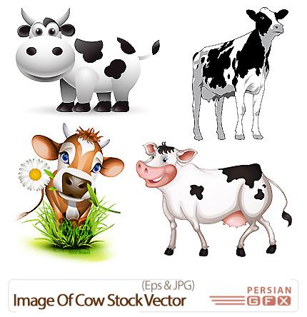 دانلود تصاویر وکتور گاو - Image Of Cow Stock Vector