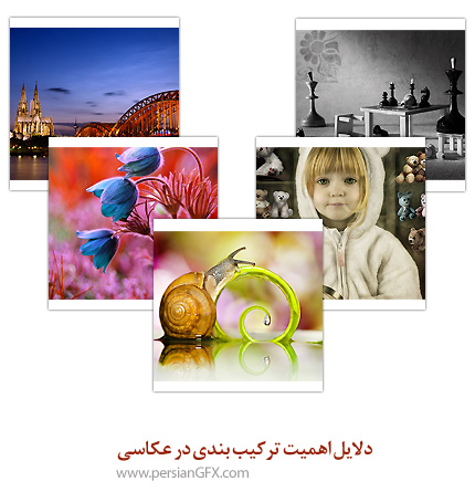 دلایل اهمیت ترکیب بندی در عکاسی