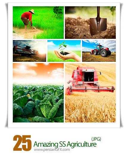 دانلود تصاویر با کیفیت کشاورزی، زمین کشاورزی، گندم، گیاهان، کشاورز، تراکتور از شاتر استوک - Amazing ShutterStock Agriculture