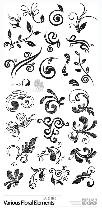 دانلود تصاویر وکتور عناصر طراحی گل های متنوع - Various Floral Elements