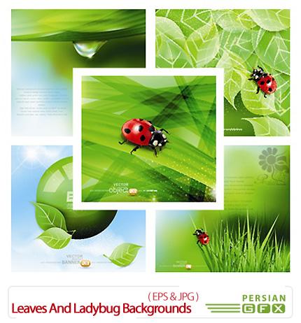 دانلود تصاویر وکتور پس زمینه طبیعت به همراه کفش دوزک - Leaves And Ladybug Vector Backgrounds