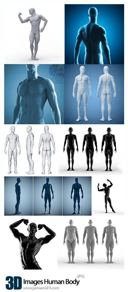دانلود تصاویر با کیفیت سه بعدی بدن مرد - Images Human Body 3D
