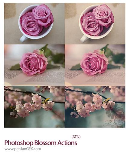 دانلود اکشن افکت های متنوع  - Photoshop Blossom Actions