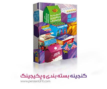 گنجینه بسته بندی و پکیجینگ به همراه آموزش مالتی مدیا - Treasure Box Packaging