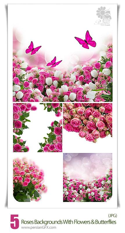 دانلود فریم های با کیفیت پس زمینه های گل رز و پروانه - Roses Backgrounds With Flowers And Butterflies