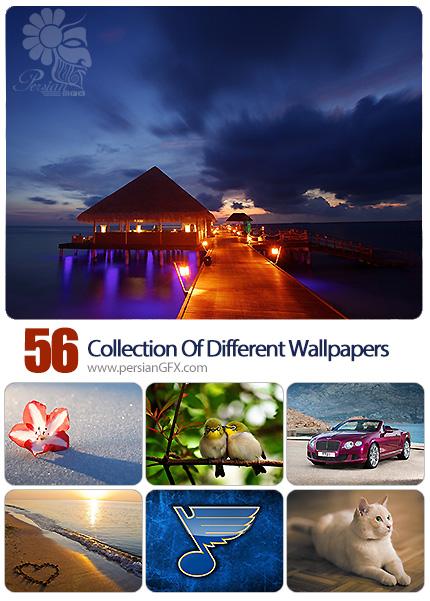 دانلود والپیپرهای متنوع - Collection Of Different Wallpapers