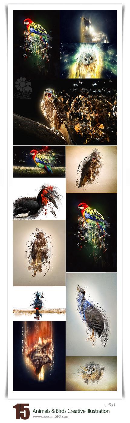دانلود تصاویر با کیفیت دستکاری شده حیوانات و پرندگان انتزاعی - Animals And Birds Creative Illustration Stock Photo