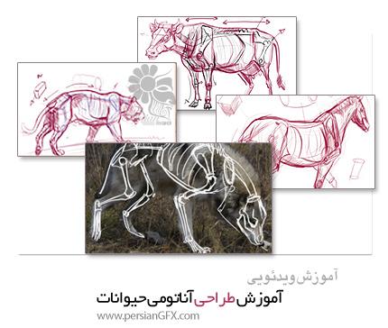 دانلود آموزش طراحی آناتومی حیوانات - New Masters Academy Introduction to Animal Anatomy 1-10
