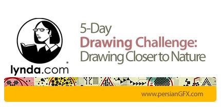 دانلود آموزش چالش های طراحی، طراحی از طبیعت - روز اول تا روز پنجم - از لیندا - Lynda 5-Day Drawing Challenge: Drawing Closer to Nature