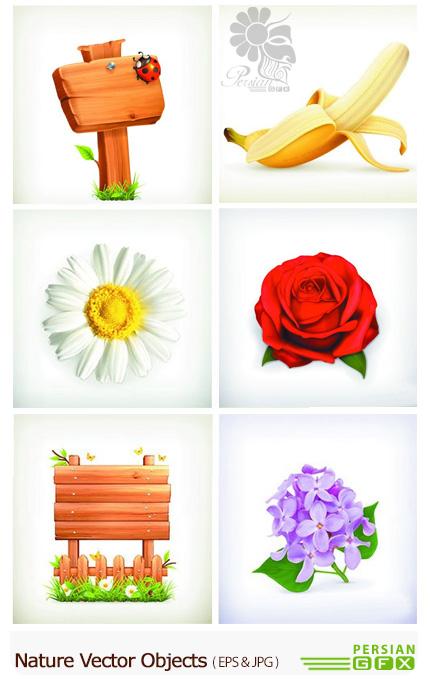 دانلود تصاویر وکتور اشیاء و عناصر طبیعی متنوع - Nature Vector Objects And Illustrations