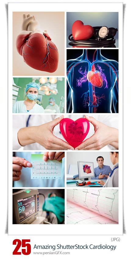 دانلود تصاویر با کیفیت قلب و عروق از شاتر استوک - Amazing ShutterStock Cardiology