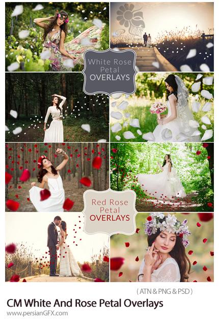 دانلود اکشن فتوشاپ ایجاد گلبرگ رز قرمز و سفید بر روی تصاویر - CM White And Rose Petal Overlays