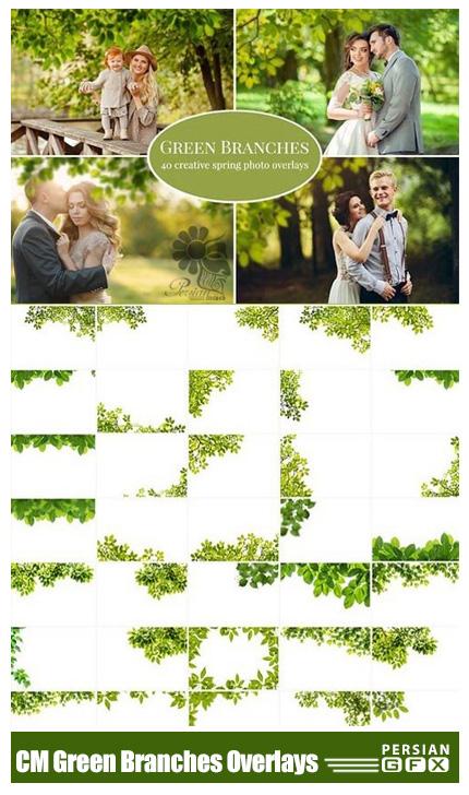 دانلود مجموعه تصاویر کلیپ آرت افکت شاخ و برگ متنوع - CM Green Branches Photo Overlays