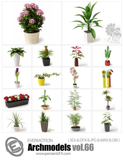 دانلود مدل های آماده سه بعدی آرچ مدل - آبجکت آماده گل و گیاهان زینتی همراه با گلدان ... - شماره 66 - Archmodels 66