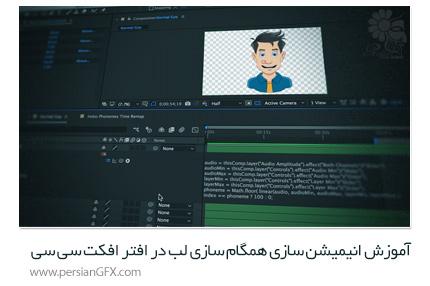 دانلود آموزش انیمیشن سازی همگام سازی لب در افتر افکت سی سی از Pluralsight - Pluralsight After Effects CC Animating Lip Sync