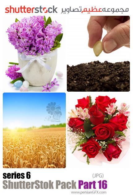 دانلود مجموعه عظیم تصاویر شاتر استوک - سری ششم - بخش شانزدهم: کشاورزی و گل