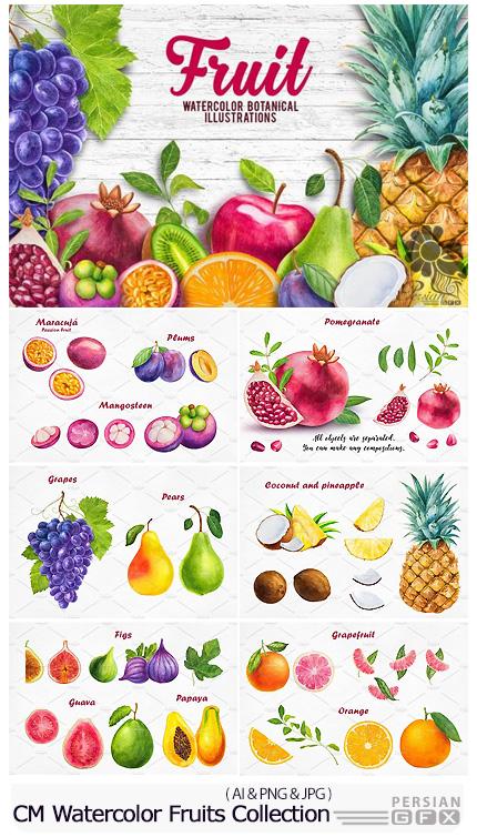 دانلود تصاویر وکتور میوه های آبرنگی متنوع، کیوی، نارنگی، انگور، گلابی و ... - CM Watercolor Fruits Collection