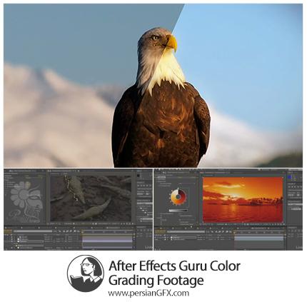 دانلود آموزش تکنیک های اصلاح رنگ فیلم در افترافکت از لیندا - Lynda After Effects Guru Color Grading Footage