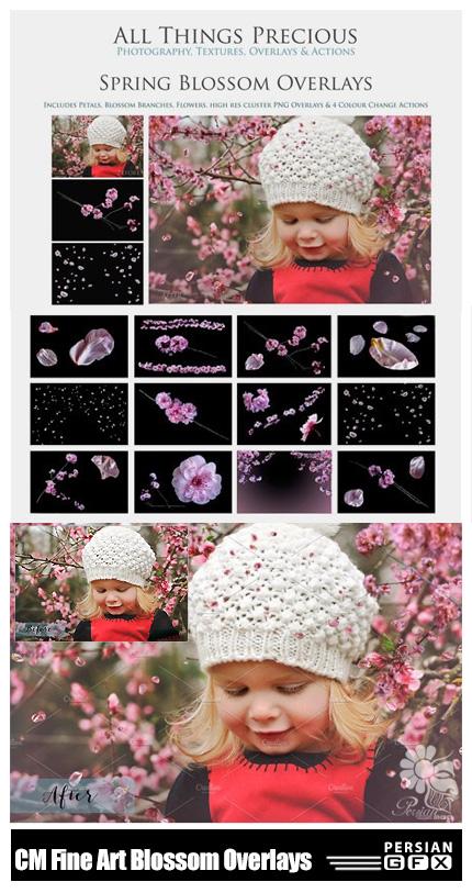 دانلود تصاویر کلیپ آرت افکت شکوفه های پراکنده برای تصاویر - CM Fine Art Blossom Overlays