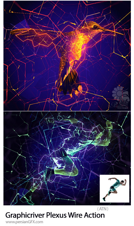 دانلود اکشن فتوشاپ ایجاد افکت سیم کشی نورانی بر روی تصاویر از گرافیک ریور - Graphicriver Plexus Wire Action