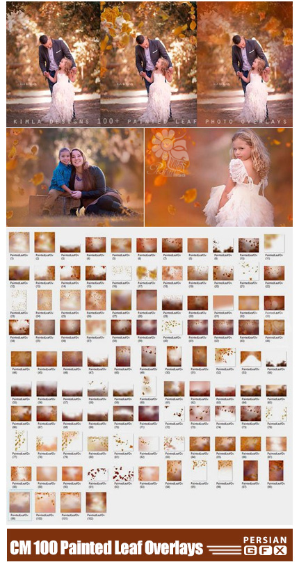 دانلود بیش از 100 کلیپ آرت پاییزی، برگ های پاییزی و افکت پاییزی برای تصاویر - CM 100 Painted Leaf Photo Overlays