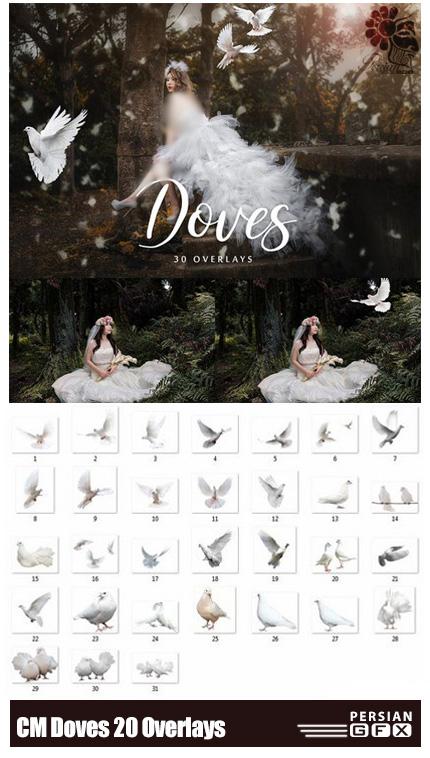 دانلود 20 کلیپ آرت پرنده بدون بک گراند - CM Doves 20 Overlays