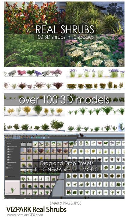 دانلود مجموعه مدل های آماده سه بعدی درختچه های واقعی - VIZPARK Real Shrubs