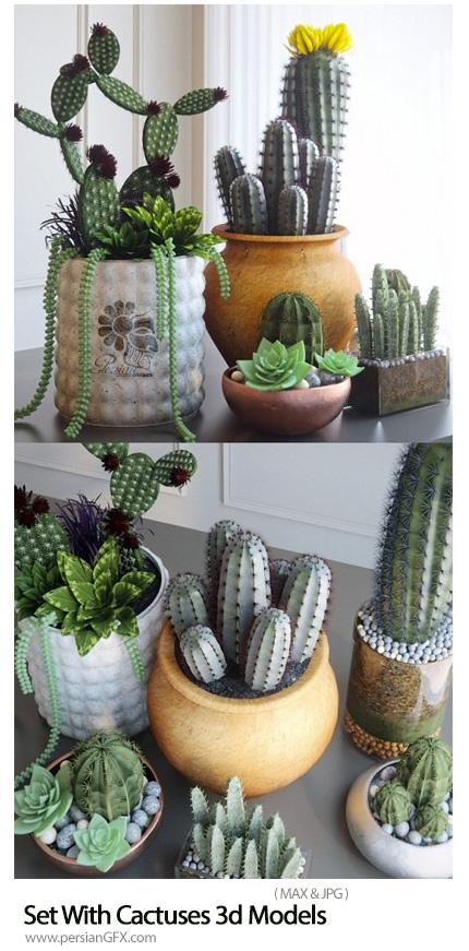 دانلود مدل های آماده سه بعدی کاکتوس - Set With Cactuses 3d Models