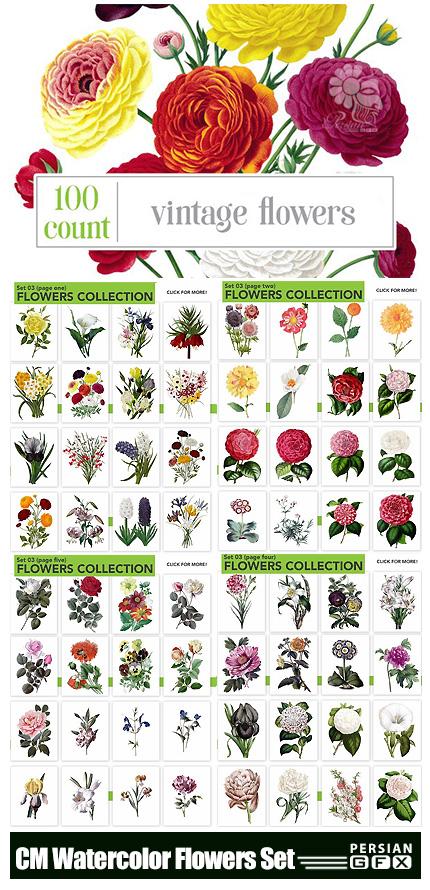 دانلود 100 تصویر کلیپ آرت گل های آبرنگی متنوع - CM Watercolor Flowers Bundle Set