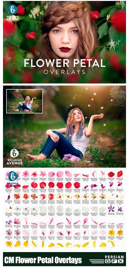 دانلود مجموعه کلیپ آرت تزئینی گلبرگ های رنگی رز طبیعی به همراه آموزش ویدئویی - CM Flower Petal Overlays (Real)