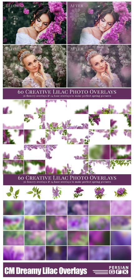 دانلود مجموعه تصاویر کلیپ آرت تزئینی گل های بنفشه - CreativeMarket Dreamy Lilac Photo Overlays