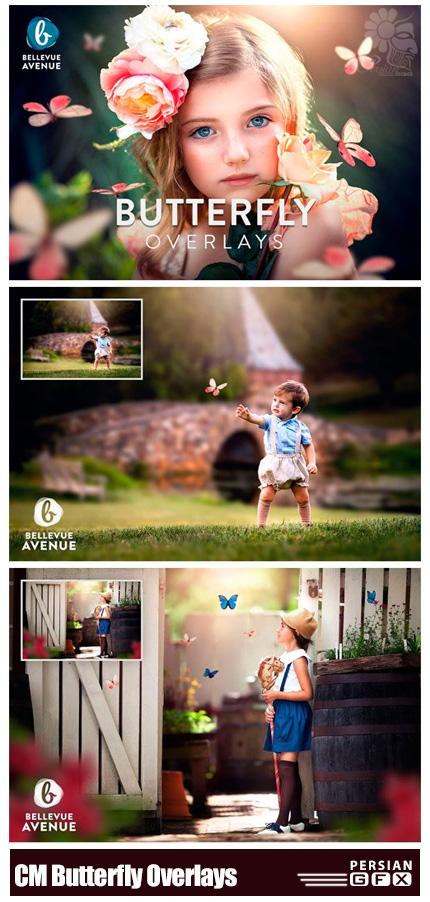 دانلود تصاویر کلیپ آرت پروانه های واقعی - CM Butterfly Overlays (Real)