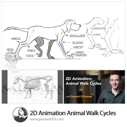 دانلود آموزش طراحی دو بعدی، متحرک سازی راه رفتن و دویدن حیوانات چهار پا از لیندا - Lynda 2D Animation Animal Walk Cycles