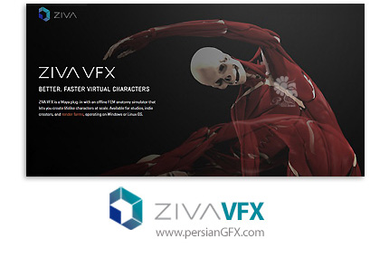 دانلود پلاگین شبیه سازی آناتومی کاراکتر ها در مایا - Ziva Dynamics Ziva VFX v1.2 for Maya 2014-2018