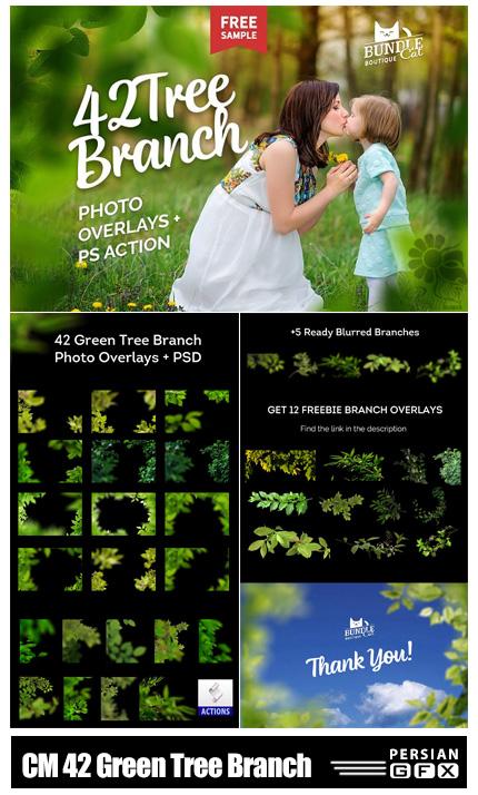 دانلود 42 کلیپ آرت شاخ و برگ درختان سبز - CreativeMarket 42 Green Tree Branch Photo Overlays