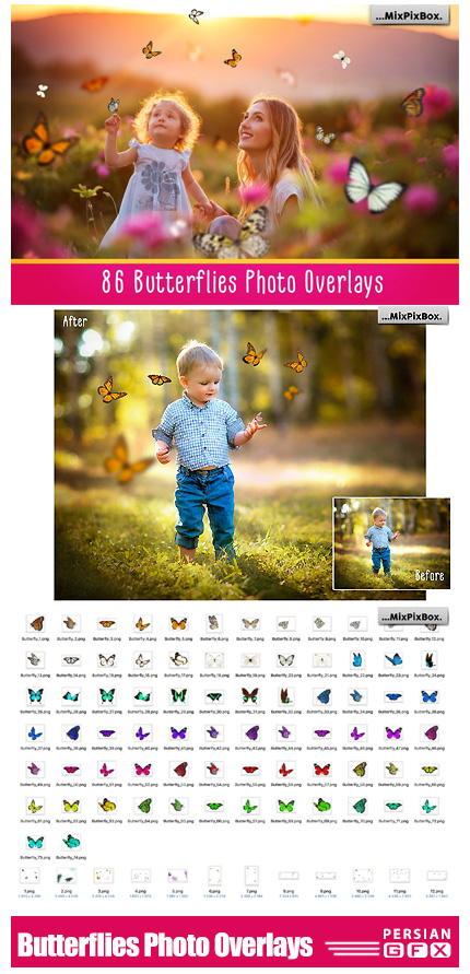 دانلود مجموعه کلیپ آرت پروانه های تزئینی متنوع - Butterflies Photo Overlays